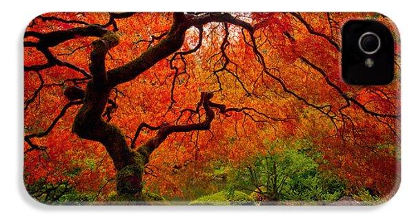 Tree Fire IPhone 4 Case by Darren  White