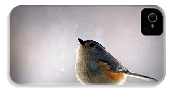 Tufted Titmouse IPhone 4 / 4s Case by Cricket Hackmann