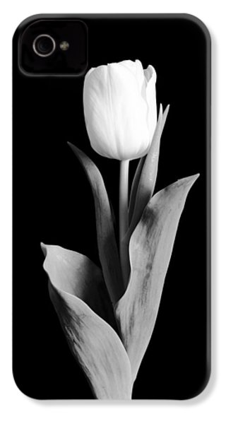 Tulip IPhone 4 Case by Sebastian Musial