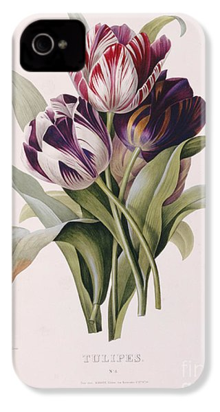 Tulips IPhone 4 / 4s Case by Pierre Joseph Redoute