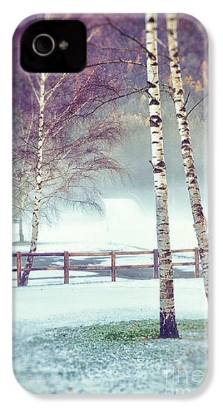 Two Birches IPhone 4 Case by Silvia Ganora
