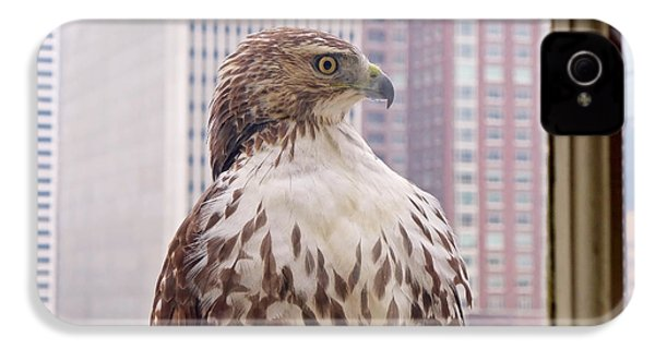 Urban Red-tailed Hawk IPhone 4 Case