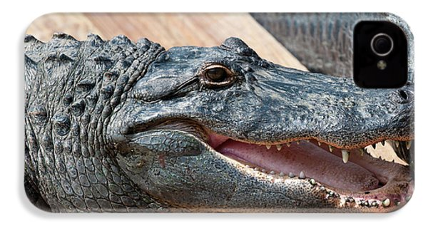Usa, Florida Gatorland, Florida IPhone 4 / 4s Case by Michael Defreitas