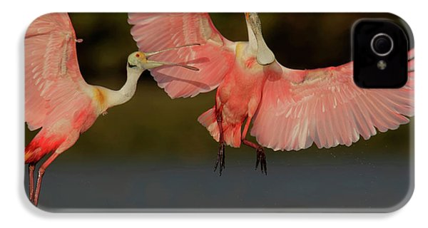 Usa, Florida, Tampa Bay, Alafaya Banks IPhone 4 Case by Jaynes Gallery