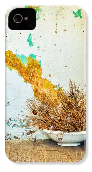 Vase On Wooden Floor IPhone 4 Case by Silvia Ganora