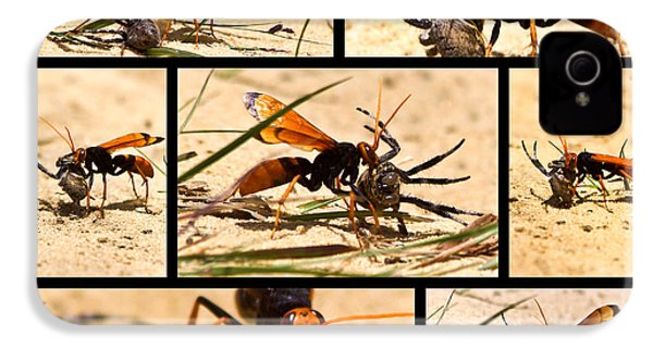 IPhone 4 Case featuring the photograph Wasp And His Kill by Miroslava Jurcik