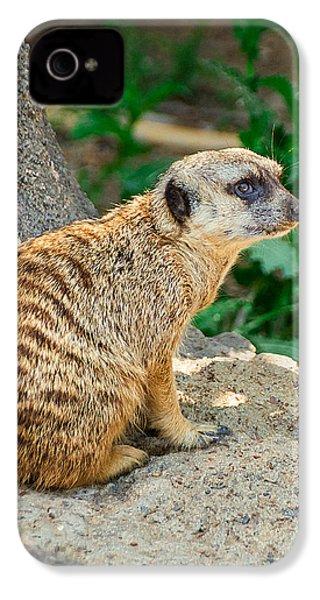 Watchful Meerkat Vertical IPhone 4 Case by Jon Woodhams