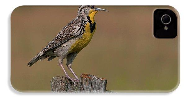 Western Meadowlark.. IPhone 4 / 4s Case by Nina Stavlund