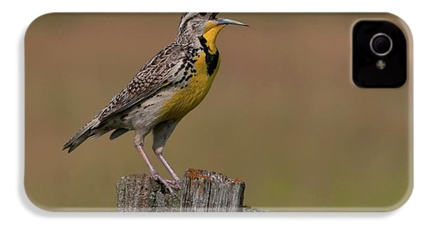 Western Meadowlark.. IPhone 4 Case by Nina Stavlund