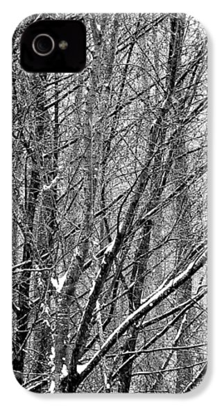 IPhone 4 Case featuring the photograph White Forest by Marc Philippe Joly