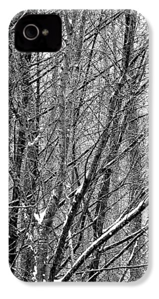 White Forest IPhone 4 Case by Marc Philippe Joly