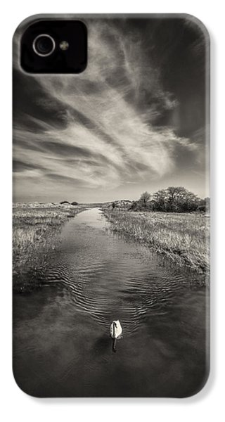 White Swan IPhone 4 Case by Dave Bowman