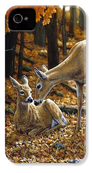 Whitetail Deer - Autumn Innocence 2 IPhone 4 Case by Crista Forest
