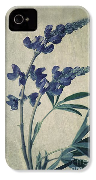Wild Lupine IPhone 4 / 4s Case by Priska Wettstein