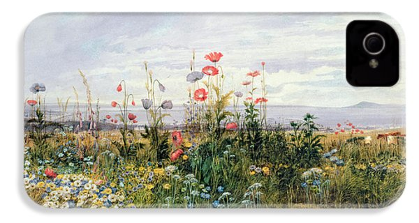 Wildflowers With A View Of Dublin Dunleary IPhone 4 Case by A Nicholl