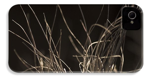 IPhone 4 Case featuring the photograph Winter Grass 2 by Yulia Kazansky