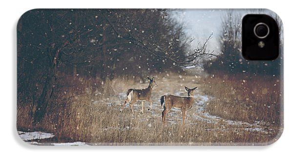 Winter Wonders IPhone 4 Case by Carrie Ann Grippo-Pike