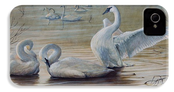 Wintering Trumpeters IPhone 4 Case by Dreyer Wildlife Print Collections
