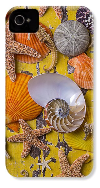 Wonderful Sea Life IPhone 4 / 4s Case by Garry Gay