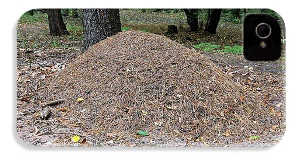 Wood Ant Nest IPhone 4 Case by Bildagentur-online/mcphoto-schulz