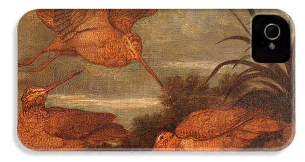 Woodcock At Dusk, Francis Barlow, 1626-1702 IPhone 4 Case by Litz Collection
