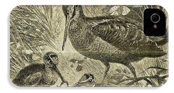 Woodcock Austria 1891 IPhone 4 Case by Austrian School