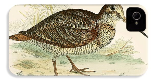 Woodcock IPhone 4 / 4s Case by Beverley R Morris
