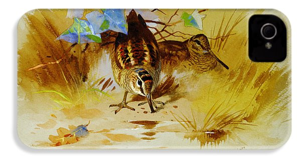 Woodcock In A Sandy Hollow IPhone 4 Case by Celestial Images