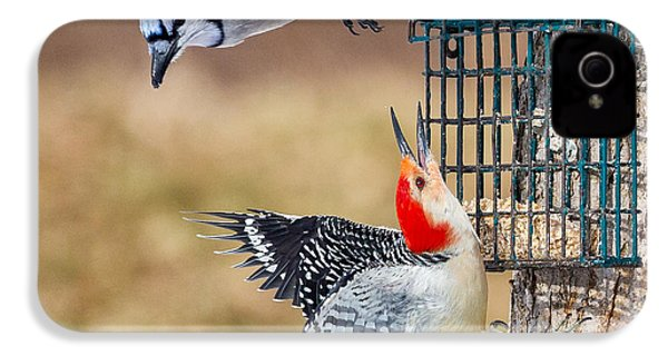 Woodpeckers And Blue Jays Square IPhone 4 / 4s Case by Bill Wakeley