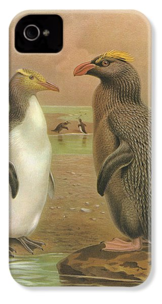 Yellow Eyed Penguin And Snares Crested Penguin  IPhone 4 Case by Rob Dreyer