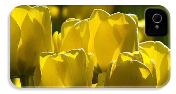 IPhone 4 Case featuring the photograph Yellow Tulips  by Yulia Kazansky