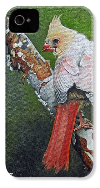 Young Cardinal  IPhone 4 / 4s Case by Ken Everett