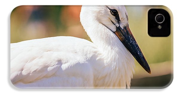 Young Stork Portrait IPhone 4 / 4s Case by Pati Photography