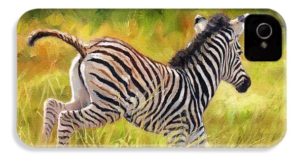 Young Zebra IPhone 4 / 4s Case by David Stribbling
