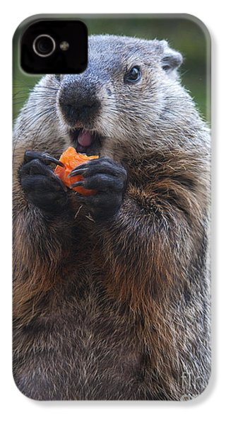 Yum-yum IPhone 4 / 4s Case by Paul W Faust -  Impressions of Light