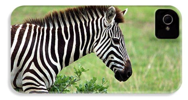 Zebra IPhone 4 / 4s Case by Aidan Moran