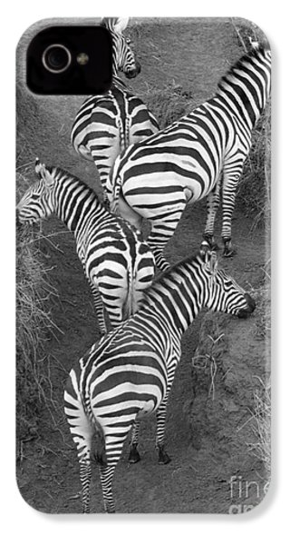 Zebra Design IPhone 4 / 4s Case by Carol Walker