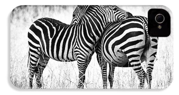 Zebra Love IPhone 4 / 4s Case by Adam Romanowicz