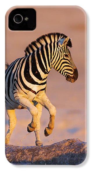 Zebras Jump From Waterhole IPhone 4 Case by Johan Swanepoel