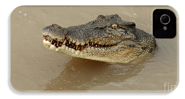 Salt Water Crocodile 3 IPhone 4 Case by Bob Christopher
