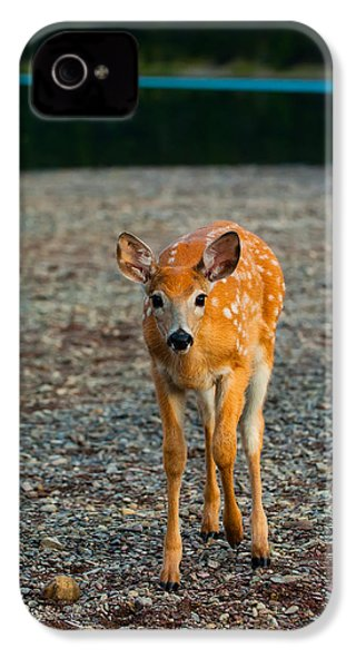 Bambi IPhone 4 Case by Sebastian Musial
