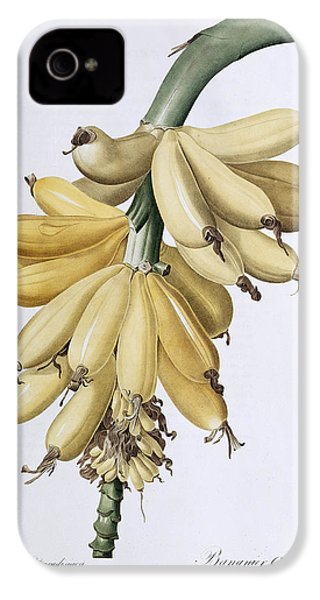 Banana IPhone 4 / 4s Case by Pierre Joseph Redoute