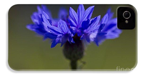 Cornflower Blue IPhone 4 Case