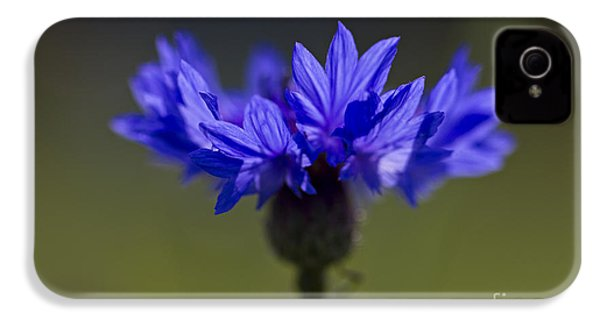 IPhone 4 Case featuring the photograph Cornflower Blue by Clare Bambers