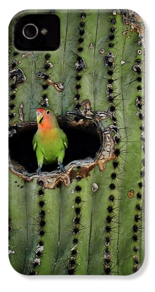 Home Sweet Home  IPhone 4 / 4s Case by Saija  Lehtonen