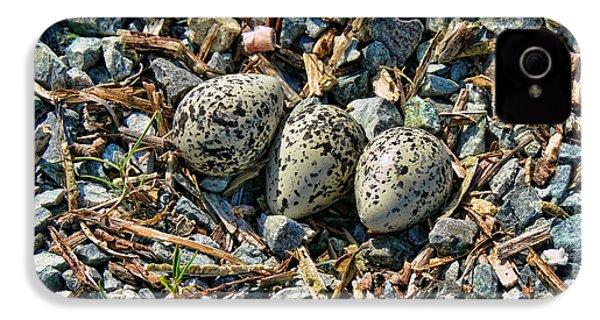 Killdeer Bird Eggs IPhone 4 / 4s Case by Jennie Marie Schell
