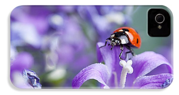 Ladybug And Bellflowers IPhone 4 Case by Nailia Schwarz