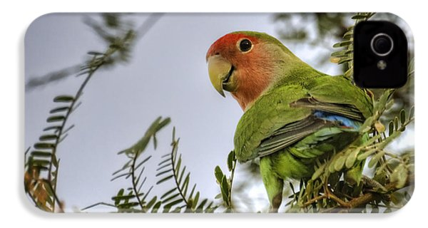 Over My Shoulder  IPhone 4 / 4s Case by Saija  Lehtonen