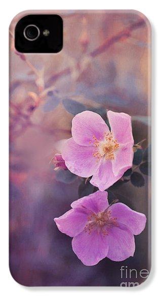 Prickly Rose IPhone 4 Case by Priska Wettstein