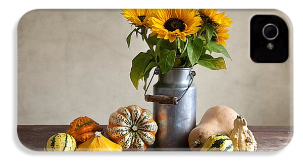 Pumpkins And Sunflowers IPhone 4 / 4s Case by Nailia Schwarz